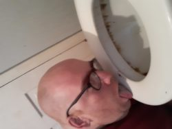 Toilet licking loser