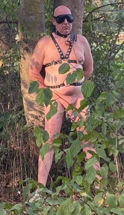 Slave Wolfgang Schanz naked exposed