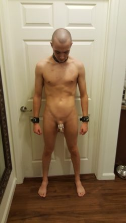 naked, totally shaved from top to toe and locked