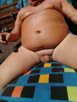 COCK IN THE SUN